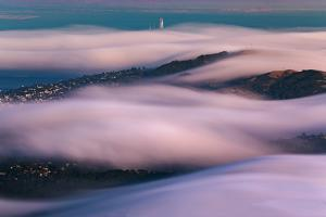 Summer Fog Streams, Marin County, Mill Valey, San Francisco by Vincent James