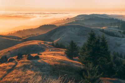 Summer Sunset at Ridgecrest Mount Tamalpais, Northern California by Vincent James