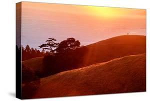Summer Sunset Mount Tam Hills, Pacific Ocean, California by Vincent James