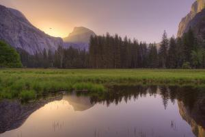 Sunrise at Cooks Meadow by Vincent James