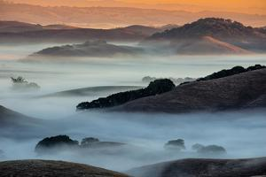 Sunrise Fog Through the Hills of Sonoma Valley, Petaluma California by Vincent James
