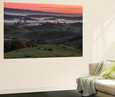 Sunrise in the Petaluma Hills, Northern California by Vincent James