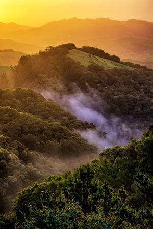 Sunrise Mood Northern California Hills, Mount Diablo by Vincent James