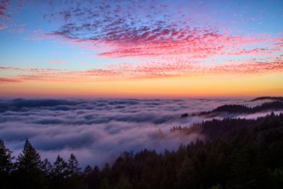 Sunset Above The Fog at Mount Tamalpais San Francisco Bay Area by Vincent James