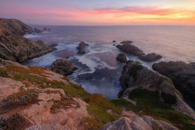Sunset at Bodega Head by Vincent James