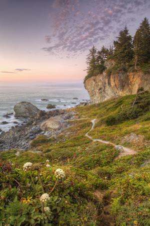 Sunset at Patrick's Point, Northern California by Vincent James