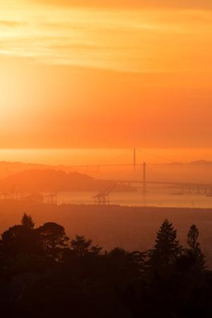Sunset Drenched Bay Area Bay Bridge Golden Gate San Francisco Bay by Vincent James
