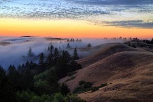Sunset Flow and Hills at Mount Tamalpais, Marin, Bay Area, California by Vincent James