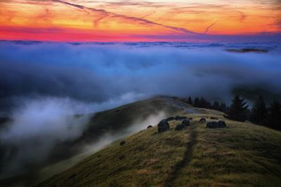 Sunset Gold Above The Fog In Heaven Mount Tamalpais Marin California by Vincent James
