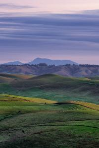 Sweet Morning Hills of Marin County, Northern California by Vincent James