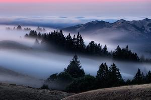 Sweet Post Sunset Light and Fog, Hills of Mount Tam, Northern California by Vincent James