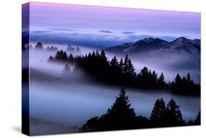 The Fog Fever Flows at Sunset Mount Tamalpais Marin San Francisco by Vincent James