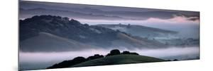 The Incredible Hills of Petaluma in the Morning Fog Country Northewrn California by Vincent James