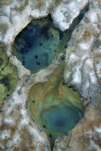 Tide Pool Detail by Vincent James