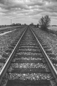 Tracks Through the Central Valley, Sacramento California by Vincent James