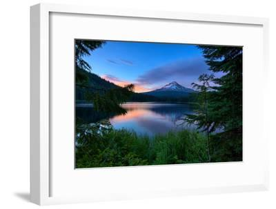 Tree Framed Trillium Lake Reflection, Summer Mount Hood Oregon