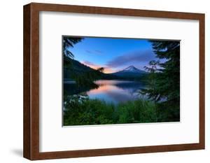 Tree Framed Trillium Lake Reflection, Summer Mount Hood Oregon by Vincent James