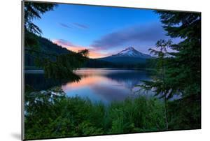 Tree Framed Trillium Lake Reflection, Summer Mount Hood Oregon by Vincent James