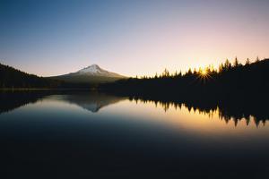 Trillium Daybreak Mount Hood Wilderness Oregon by Vincent James