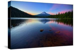 Trillium Fever, Mount Hood, Oregon by Vincent James