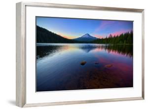 Trillium Fever, Mount Hood, Oregon by Vincent James
