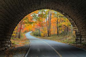 Tunnel Through Autumn, Bar Harbor, Maine, Acadia National Park by Vincent James