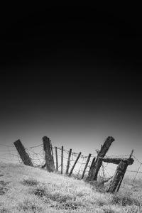 Twisted Fence and Morning Fog, Petaluma California by Vincent James