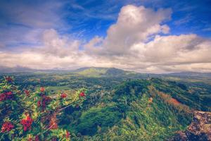 View from the Sleeping Giant, Kauai Hawaii by Vincent James