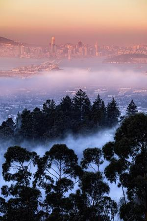Views Epic Fog Bau Area Hills San Francisco Skyline Morning Light by Vincent James