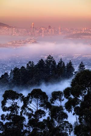 Views Epic Fog Bau Area Hills San Francisco Skyline Morning Light by Vincent James