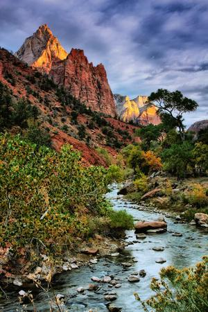 Virgin River Morning View, Zion National Park, Utah