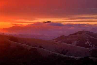 Warm Ethereal Sunrise Fog, East Bay Hills, Oakland, San Francisco by Vincent James