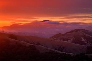 Warm Ethereal Sunrise Fog, East Bay Hills, Oakland, San Francisco by Vincent James