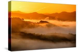 Warm Light & Misty Hills Northern California Dreamy Vista by Vincent James