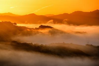 Warm Light & Misty Hills Northern California Dreamy Vista by Vincent James