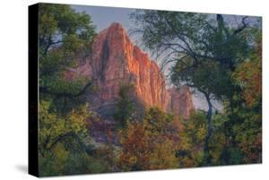 Watchman and Fall Frame, Zion Southwest Utah by Vincent James