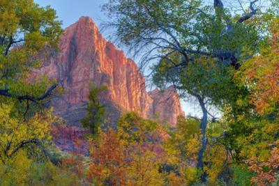 Watchman and Fall Frame by Vincent James