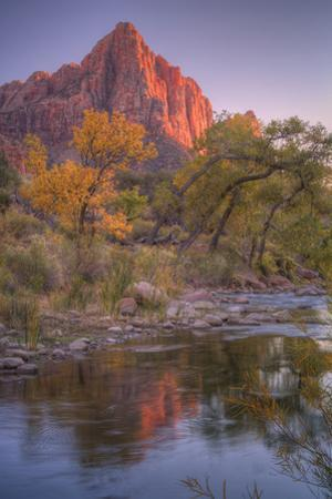 Watchman Reflection in Virgin River, Southwest Utah by Vincent James