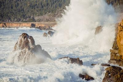 Wave Crash, Sonoma Coast, California State Parks, Coast Life by Vincent James