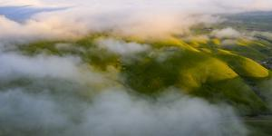 Winter Green Hills and Fog Over East Bay Hills, Northern California by Vincent James