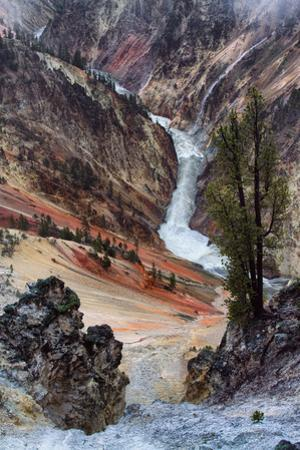 Within the Grand Canyon of the Yellowstone River Wyoming Epic Wyoming by Vincent James