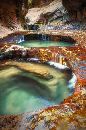 Within The Subway, Planet Earth Zion National Park, Utah