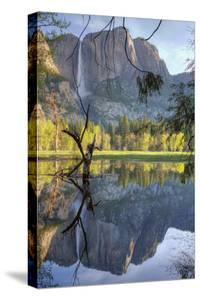 Yosemite Falls Reflection at Swinging Bridge by Vincent James