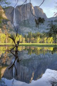 Yosemite Falls Reflection at Swinging Bridge by Vincent James