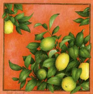 Citrons by Vincent Jeannerot
