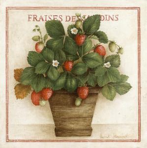 Fraises des Jardins by Vincent Jeannerot