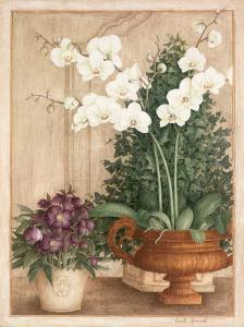 Grande Orchidée I by Vincent Jeannerot