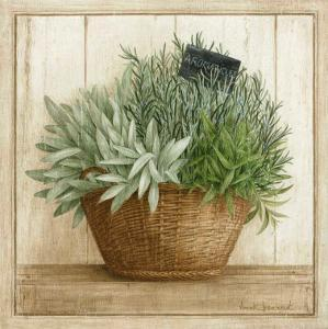 Herbes Aromatiques by Vincent Jeannerot