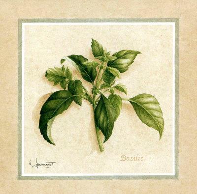 Herbes III
