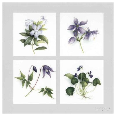 Les Fleurs Violettes
